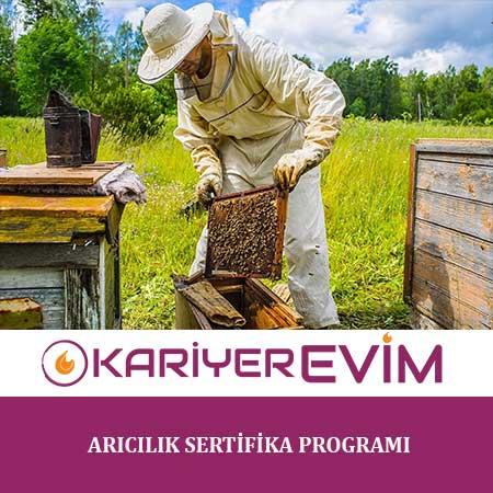 Arıcılık Sertifika Programı